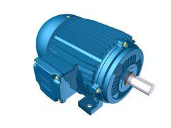 Motor Elétrico Weg de 100cv, 890 RPM, 220/380v Trifásico