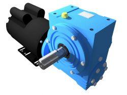 Motoredutor Redução de 1:100 com Motor Monofásico 0,75cv WN1
