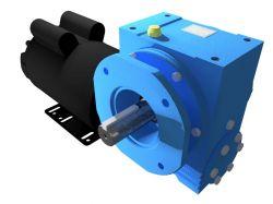 Motoredutor Redução de 1:100 com Motor Monofásico 2cv WN14