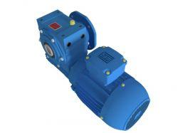 Motoredutor com motor de 0,5cv 117rpm Magma Weg Cestari Trifásico V3