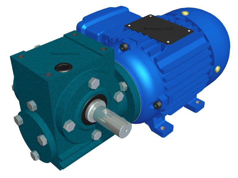 Motoredutor Redução de 1:30 com Motor de 0,33cv 4Polos WD1