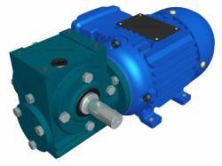 Motoredutor Redução de 1:10,5 com Motor de 0,33cv 4Polos WD1