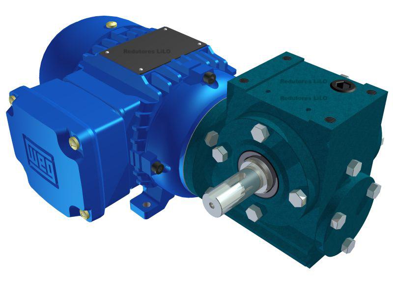 Motoredutor Redução de 1:15 com Motor de 0,33cv 4Polos WN1