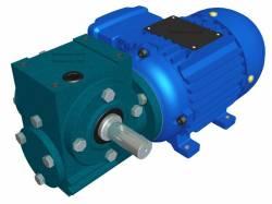 Motoredutor Redução de 1:15 com Motor de 0,33cv 4Polos WN2