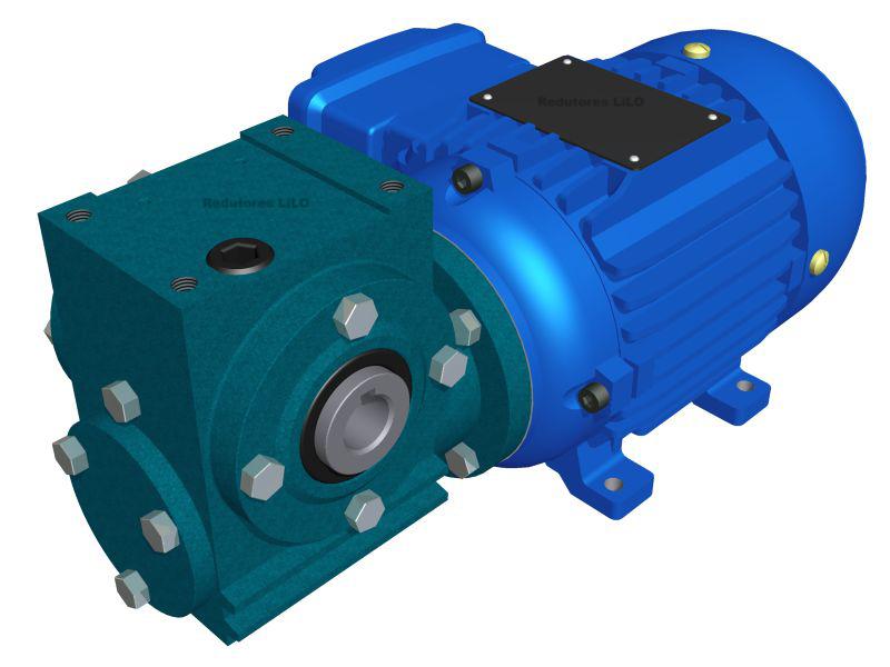 Motoredutor Redução de 1:50 com Motor de 0,33cv 4Polos WV1
