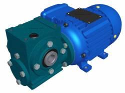 Motoredutor Redução de 1:60 com Motor de 0,33cv 4Polos WV1