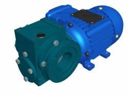 Motoredutor Redução de 1:30 com Motor de 0,33cv 4Polos WV7