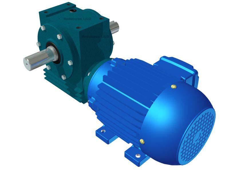 Motoredutor Redução de 1:50 com Motor de 0,5cv 4Polos WD1