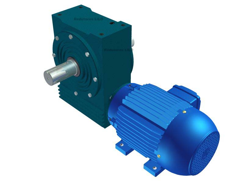 Motoredutor Redução de 1:25 com Motor de 7,5cv 4Polos WD1
