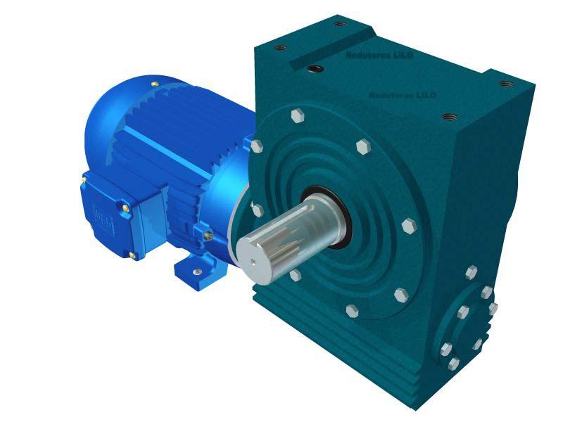 Motoredutor Redução de 1:25 com Motor de 7,5cv 4Polos WN1