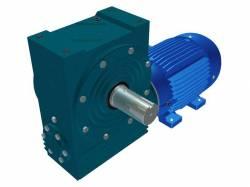 Motoredutor Redução de 1:25 com Motor de 7,5cv 4Polos WN2