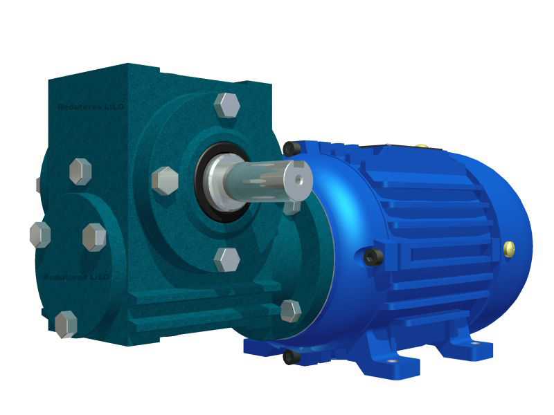 Motoredutor Redução de 1:80 com Motor de 0,33cv 4Polos WN2