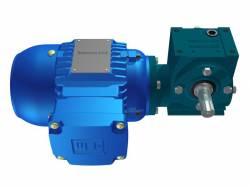 Motoredutor Redução de 1:80 com Motor de 0,33cv 4Polos WN1
