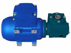 Motoredutor Redução de 1:80 com Motor de 0,33cv 4Polos WV1