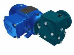 Motoredutor Redução de 1:80 com Motor de 0,33cv 4Polos WN15