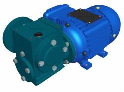 Motoredutor Redução de 1:80 com Motor de 0,33cv 4Polos WN14