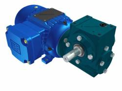 Motoredutor Redução de 1:80 com Motor de 0,33cv 4Polos WD1