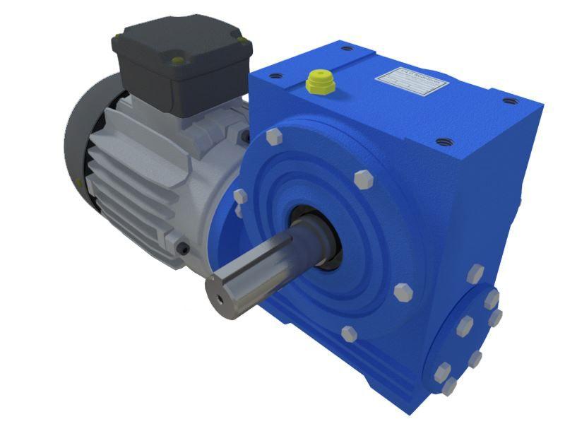 Motoredutor com Motor Monofásico de 0,5cv 220v e 18rpm WN1 1:100