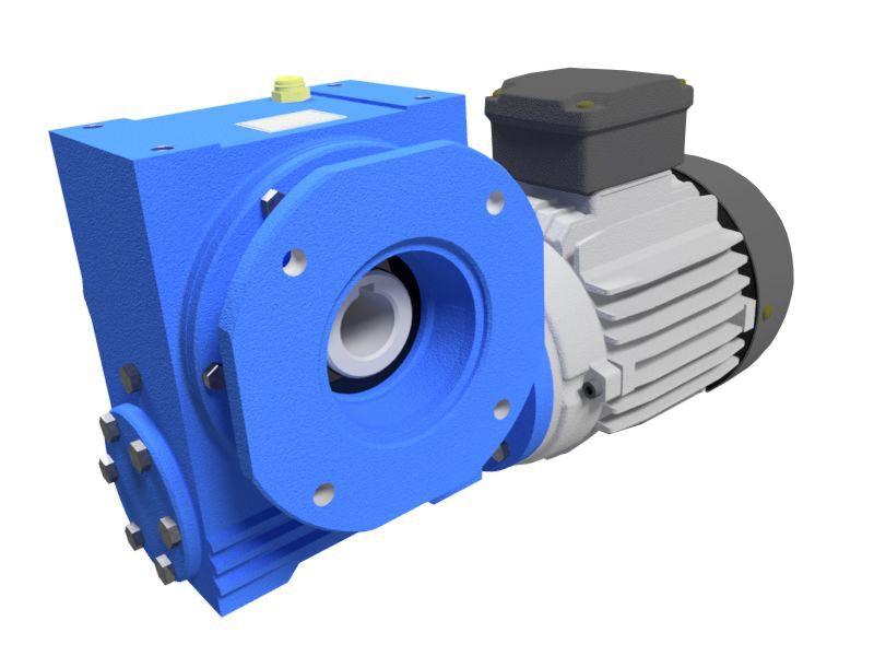 Motoredutor com Motor Monofásico de 0,5cv 220v e 29rpm WV7 1:60