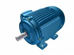 Motor Elétrico Weg de 2cv, 1150 RPM, 220/380v Trifásico