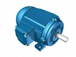 Motor Elétrico Weg de 2cv, 3385 RPM, 220/380v Trifásico
