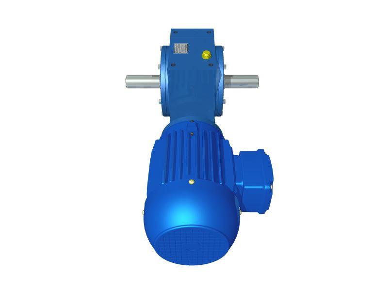 Motoredutor Redução de 1:100 com Motor de 1,5cv 4Polos WD1