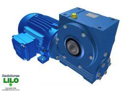 Motoredutor Redução de 1:100 com Motor de 0,5cv 4Polos WV1